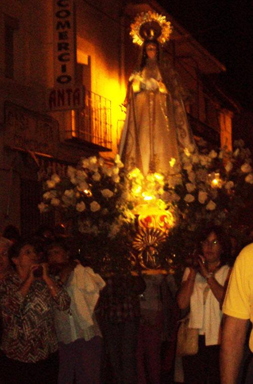 Fiestas de La Virgen, 2009