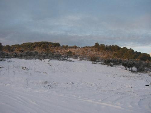 Primera gran nevada del año