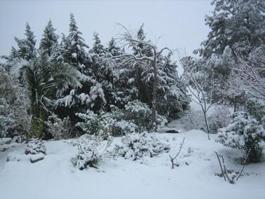 Nieve sobre La Adrada