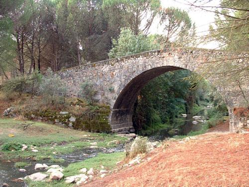 Puentes y ríos
