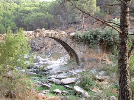 Puente Mocha - La Adrada