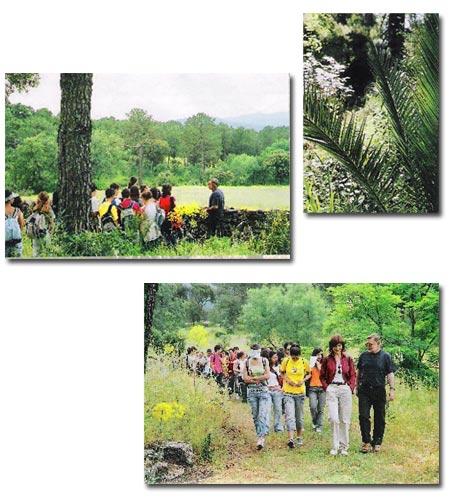 Jardín Botánico Valle del Tiétar