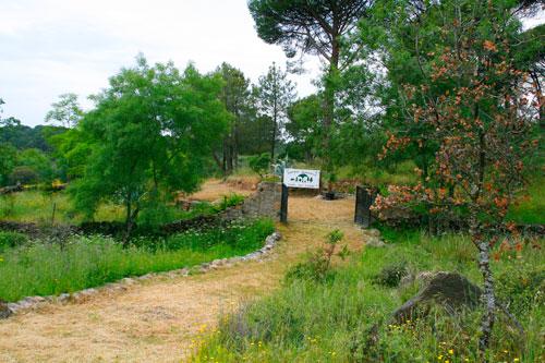 Jardín Botánico Valle del Tiétar - La Adrada (Ávila)