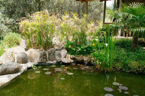 Jardín Botánico Valle del Tiétar - La Adrada