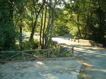 Carta a la web: Limpieza del camino forestal