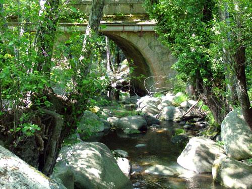 Puente Martinete - La Adrada