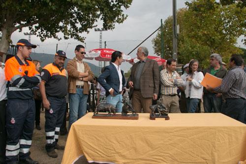 Feria de los Santos 2014 en La Adrada