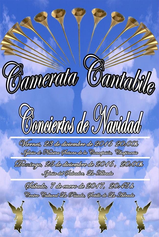 Camerata Cantabiel-Concierto de Navidad