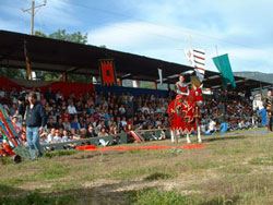 Torneo medieval 2003