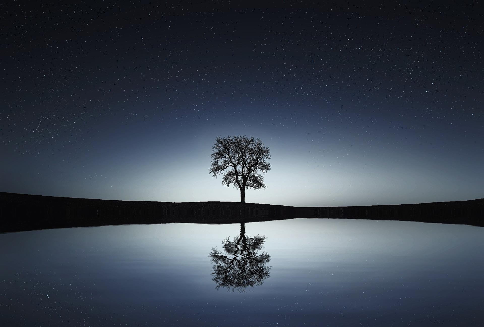 """Aunque supiera que el mundo se acabara mañana, aún así plantaría un árbol"""""""